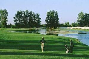 在菲斯打高尔夫:皇家高尔夫球场